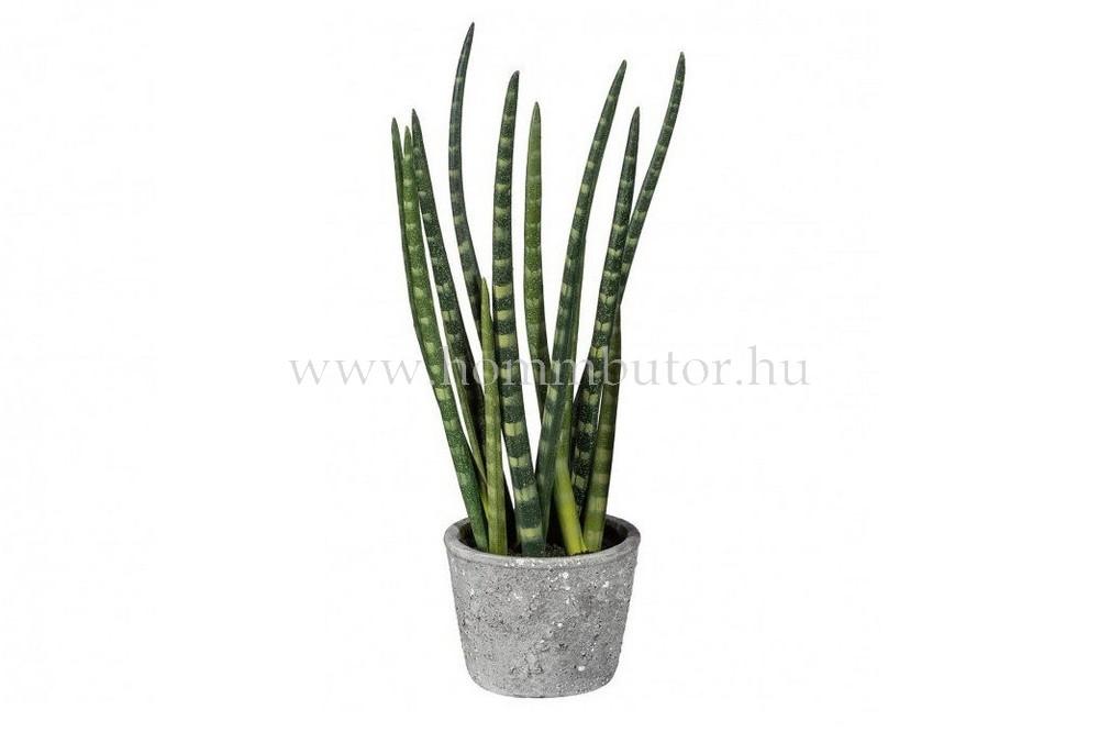 ALOE VERA élethű növény dekoráció 45 cm magas