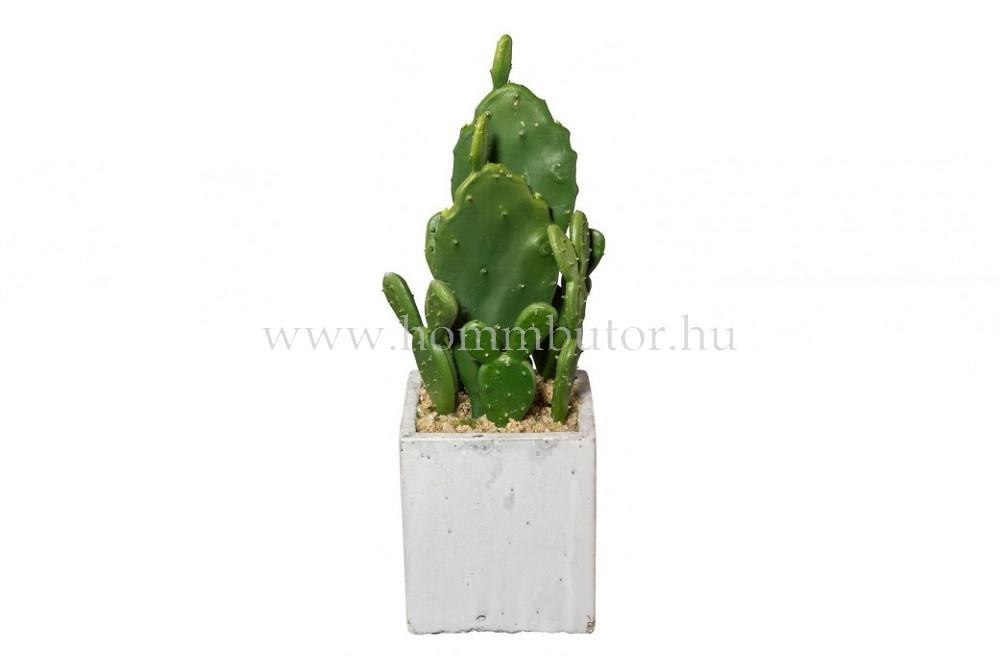 FÜGEKAKTUSZ élethű növény dekoráció 14 cm magas
