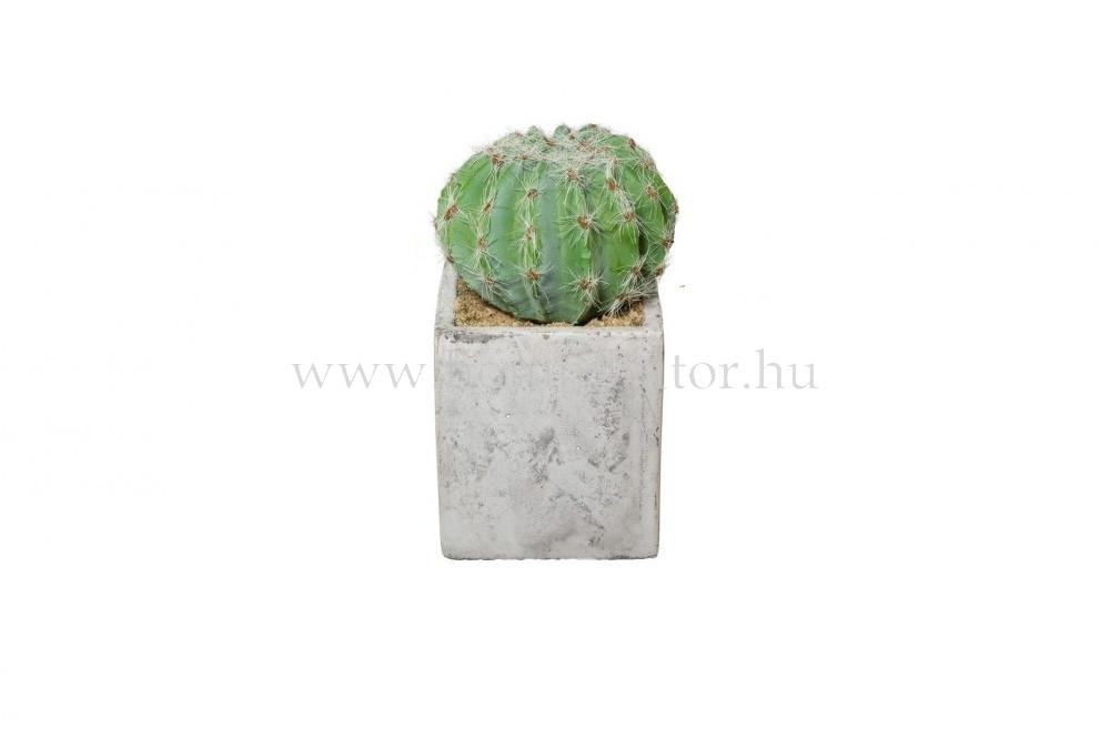 GÖMBKAKTUSZ élethű növény dekoráció