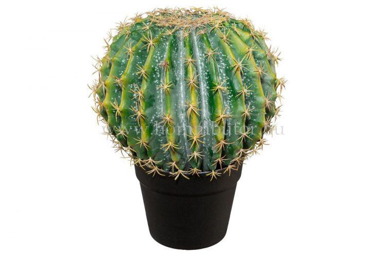 GÖMBKAKTUSZ élethű növény dekoráció 33 cm magas