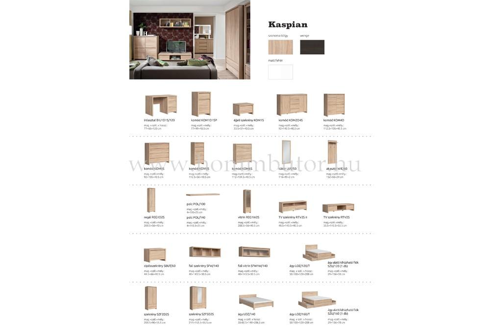 KASPIAN nyílóajtós szekrény 2 ajtós, 2 fiókos 90x201 cm