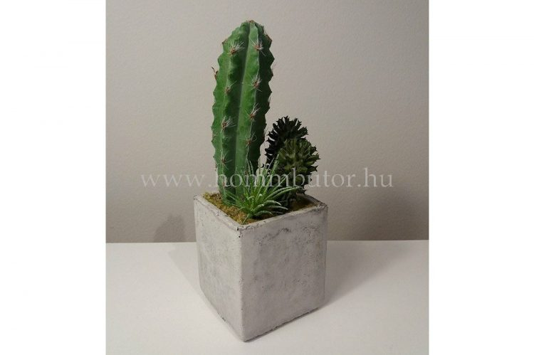 KAKTUSZ MIX élethű növény dekoráció 16 cm magas