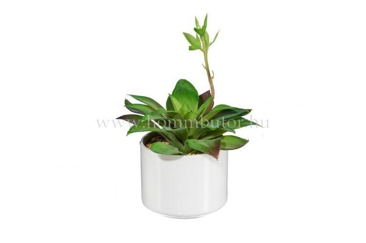 FUTÓ KÖVI RÓZSA élethű növény dekoráció 16 cm magas
