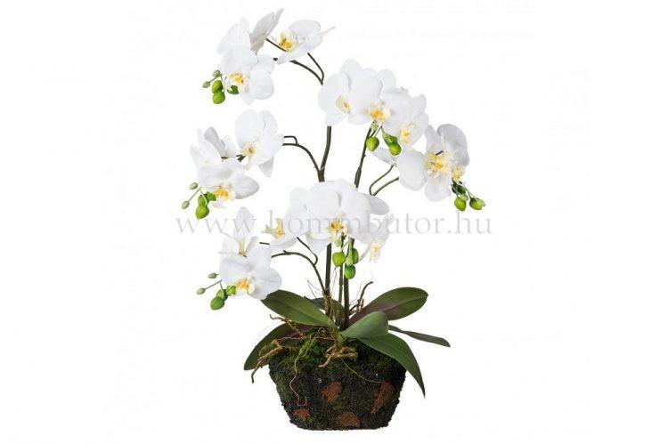 ORCHIDEA élethű növény dekoráció 60 cm magas