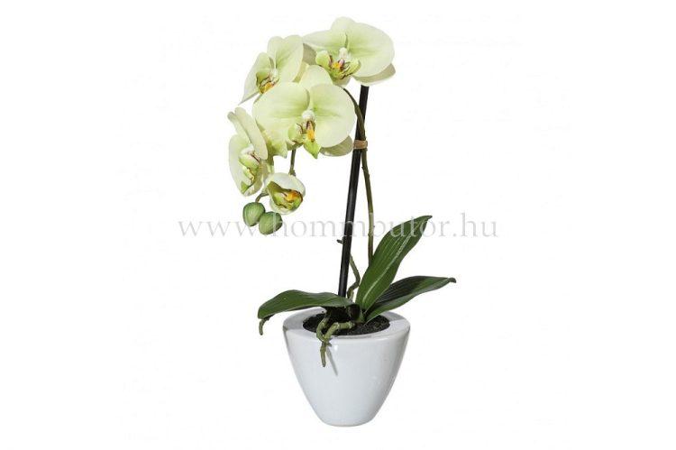 ORCHIDEA élethű növény dekoráció 36 cm magas