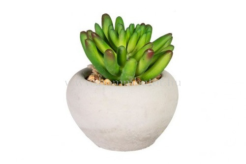 POZSGÁS élethű növény dekoráció 12 cm magas
