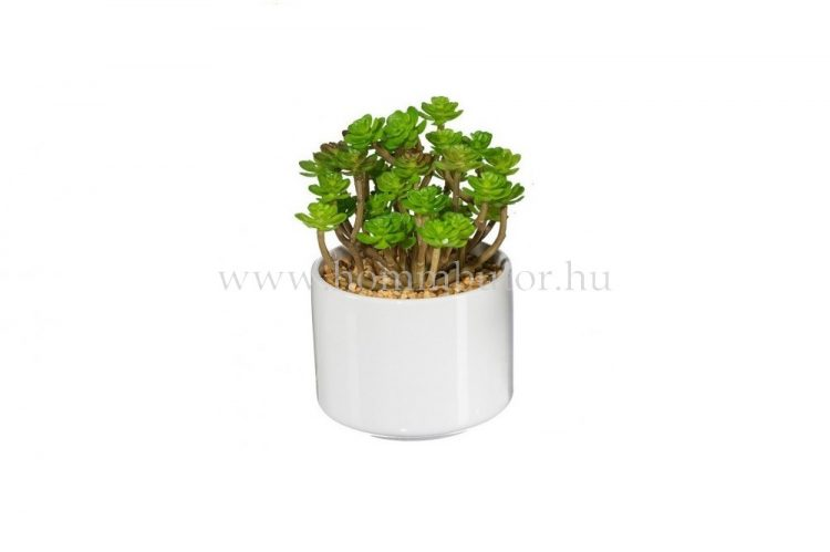 TOBOZ RÓZSA élethű növény dekoráció 16 cm
